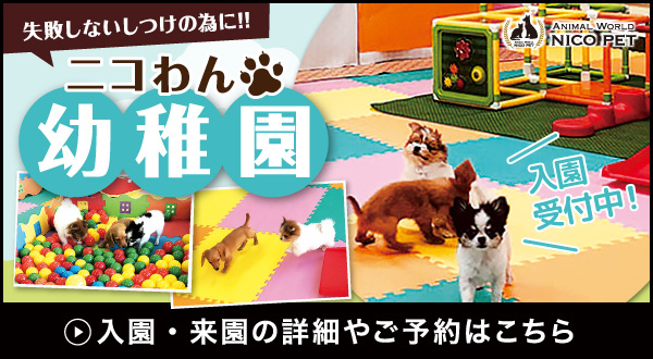 ニコペット久喜菖蒲店 幼稚園