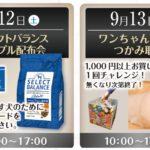 9/12.13週末イベントご案内