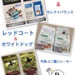 ⭐️週末イベント&新商品紹介⭐️