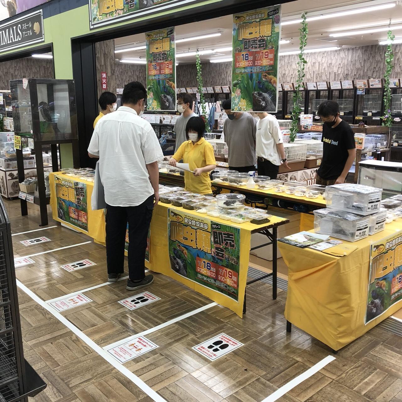 2019年にホームセンタームサシ新潟店で開催された時の様子
