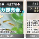 ニコペット久喜菖蒲店:週末イベントのご案内