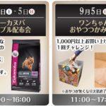 ニコペット久喜菖蒲店:イベントご案内✨